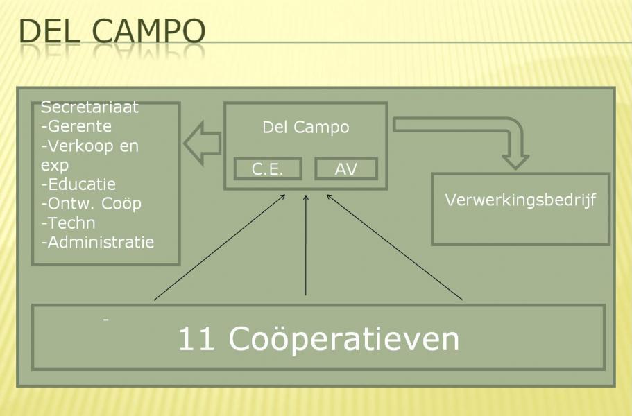Organigram van Del Campo